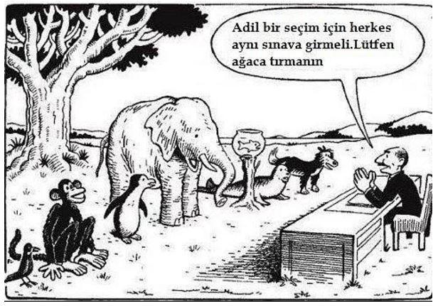 Adil olup olmadığını sorgulama, sınava odaklan
