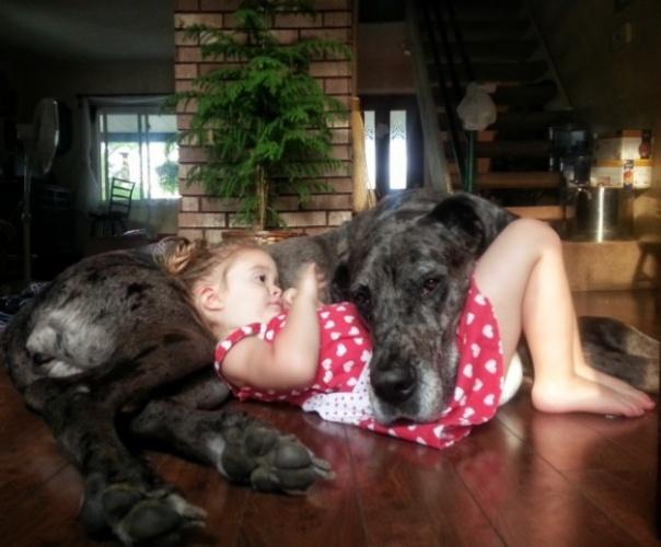 Köpeğin en yakın arkadaşımız olduğunu kanıtlayan fotoğraflar
