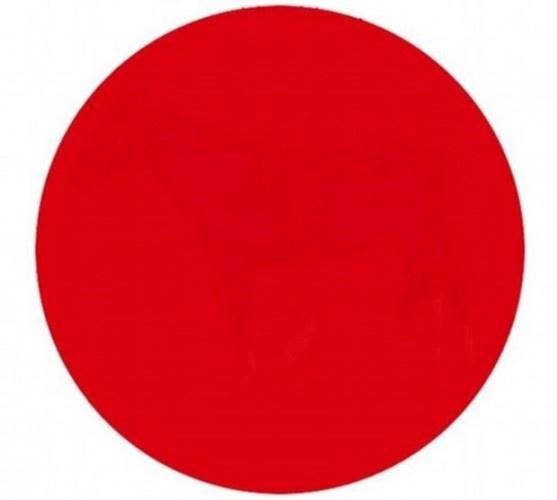 Kırmızı noktanın içinde ne var?