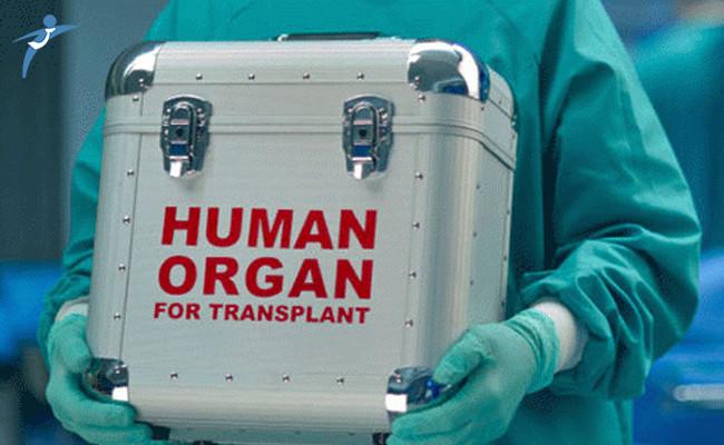 30 Bine Yakın Hasta Organ Nakli Bekliyor
