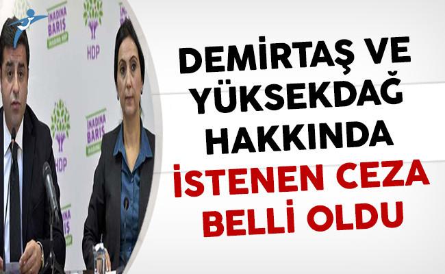HDP Eş Genel Başkanları Demirtaş ve Yüksekdağ İçin İstenen Cezalar Belli Oldu