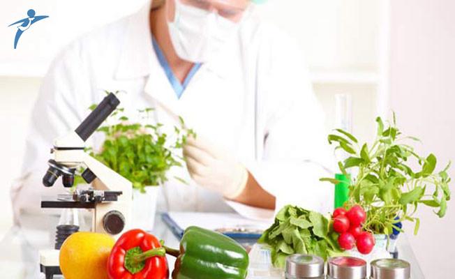 Gıda Tarım ve Hayvancılık Bakanlığı 2017 Yılında Gıda Mühendisi Alımı Yapacak Mı?