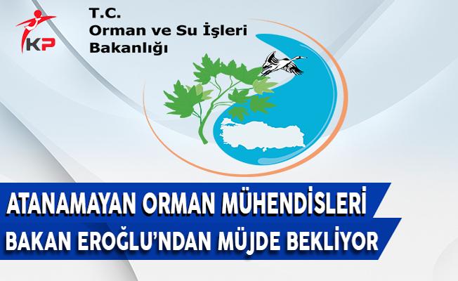 Orman Mühendisleri Bakan Eroğlu'ndan Atama Müjdesi Bekliyor !