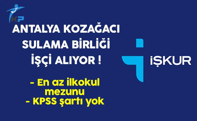 Antalya Kozağacı Sulama Birliği İşçi Alıyor