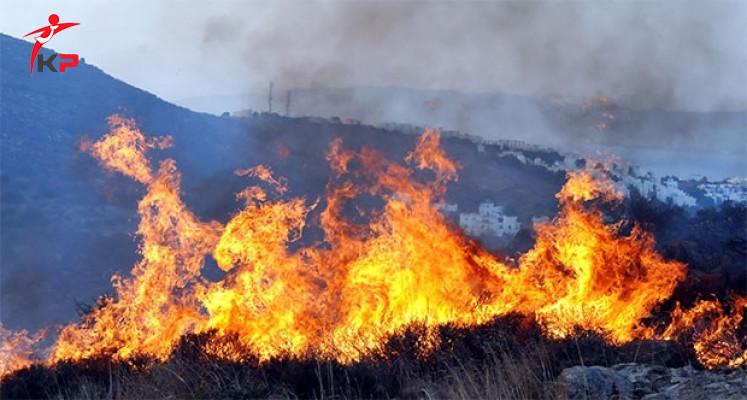 Bodrum'da Çıkan Yangın Korku Saldı