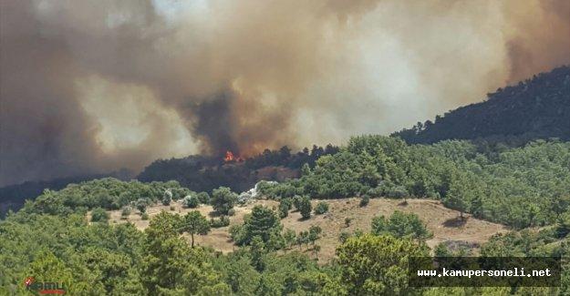 Antalya Adrasanda Orman Yangını Çıktı