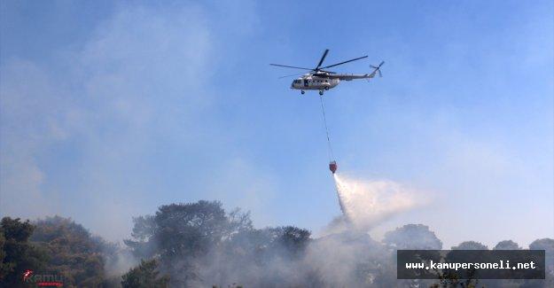 Antalya'daki Orman Yangını Büyümeden Söndürüldü