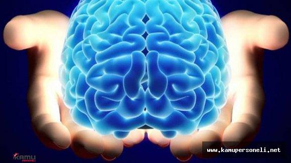Aşırı Kilo Beyni Etkiliyor