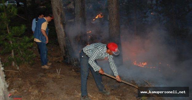 Aydın'da Orman Yangını Şiddetle Devam Ediyor