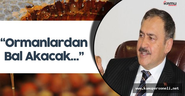 """Bakan Eroğlu :"""" Ormanlardan Artık Bal Akacak..."""""""