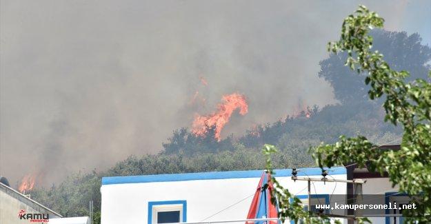 Bodrum'da Çıkan Yangın Yerleşim Yerlerine Yaklaşıyor