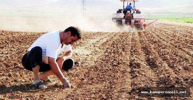 Çiftçilere Dekar Başına 110 Lira Ödeme Yapılacak