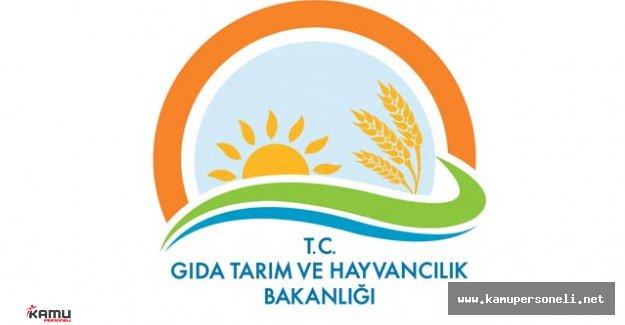 Denizli Gıda Tarım ve Hayvancılık İl Müdürlüğü Sözleşmeli Personel Alımı