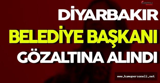 Diyarbakır Belediye Başkanı Gözaltına Alındı
