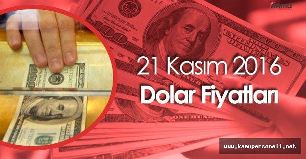 Dolar Haftaya 3,38 ile Başladı (21 Kasım Dolar Fiyatları)