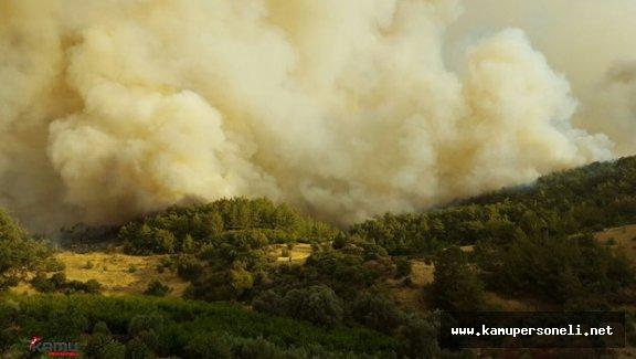 Durmak Bilmeyen Orman Yangını ( Helikopter Uçak ve 200 Yangın İşçisi Müdahale Ediyor )