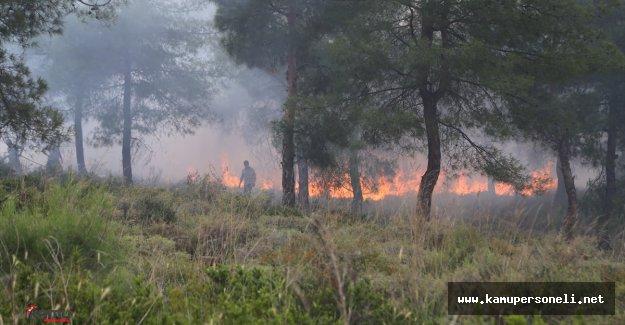 Hatay'da Orman Yangını ( Soğutma Çalışmaları Devam Ediyor)