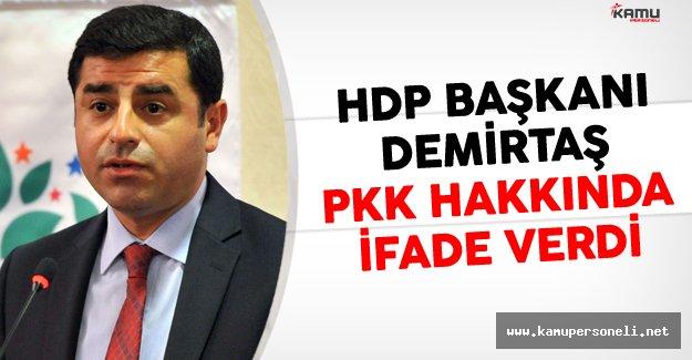 HDP Genel Başkanı Selahattin Demirtaş'tan PKK Hakkında İfade Verdi