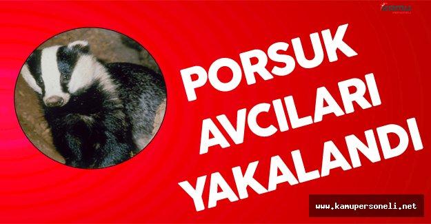 Iğdır'da Porsuk Avcıları Kıskıvrak Yakalandı