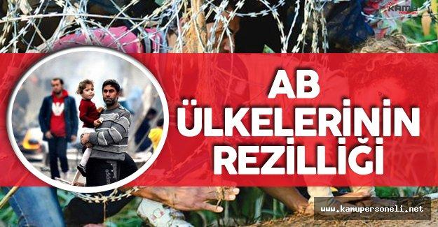 İnsancıl Avrupa Ülkeleri Bakın Ne Kadar Mülteciye Kucak Açmış !