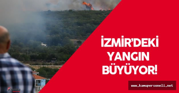 İzmir'deki Orman Yangını Rüzgarın Etkisiyle Büyüyor