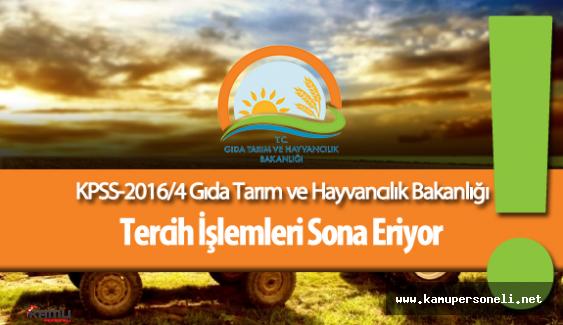 KPSS 2016/4 Gıda Tarım ve Hayvancılık Bakanlığı Personel Alımı Tercih İşlemleri Sona Eriyor