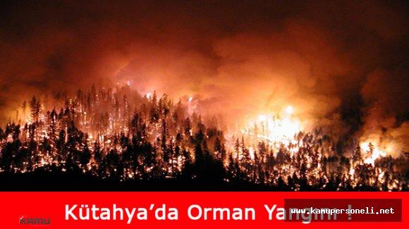 Kütahya'da Çıkan Orman Yangınında 100 Hektarın Üzerinde Çamlık Zarar Gördü