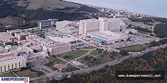 On Dokuz Mayıs Üniversitesi 6 Akademik Personel Alacak