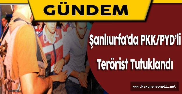 Şanlıurfa'da Yakalanan PYD/PKK'lı Terörist Tutuklandı