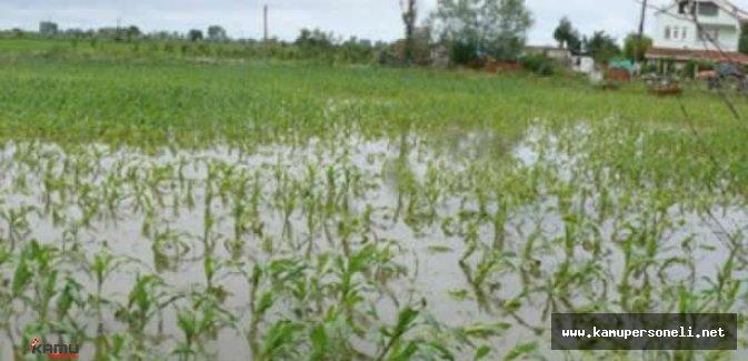 Şiddetli Yağış ve Hortum Tarım Alanlarında Ciddi Hasara Sebep Oldu