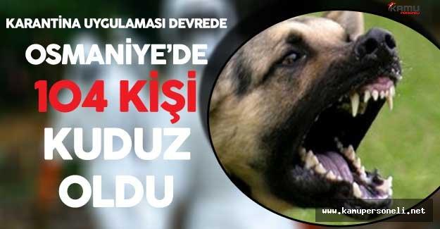 Son Dakika ! Osmaniye'de Kuduz Paniği ! 104 Kişi Kuduz Oldu