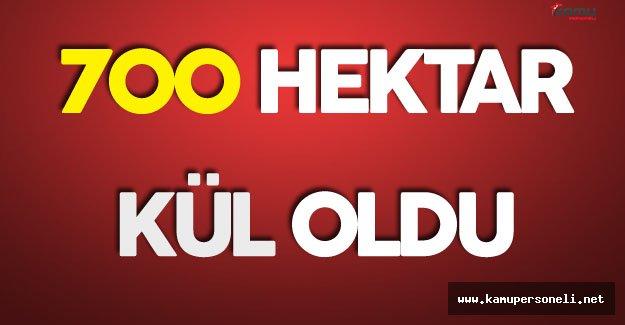 Son Dakika: Sivas'ta Ciğerlerimiz Yanıyor!