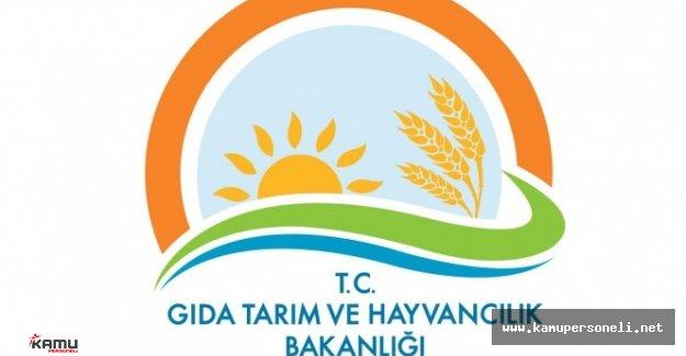 Tarım Bakanlığı Sözleşmeli Programcı ve Çözümleyici Alımı Sözlü Mülakata Katılmaya Hak Kazananlar