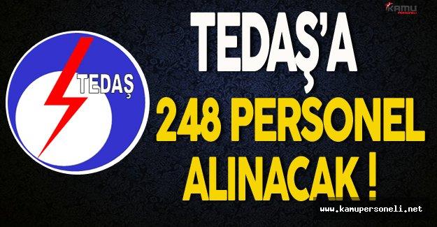 TEDAŞ 248 Personel Alımı Yapacak