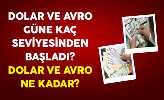 Dolar ve Avro Güne Kaç Seviyesinden Başladı? 19 Ocak 2017 Dolar ve Avro Ne Kadar?
