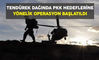 Tendürek Dağında PKK Hedeflerine Yönelik Operasyon Başlatıldı