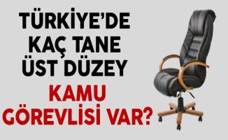 Türkiye'de Kaç Tane Üst Düzey Kamu Görevlisi Var?