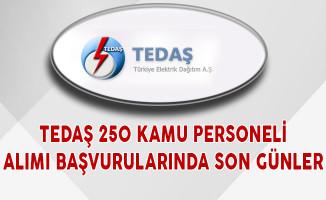 TEDAŞ 250 Kamu Personeli Alımı Başvurularında Son Günler