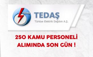 TEDAŞ Türkiye Geneli 250 Kamu Personeli Alımında Son Gün !
