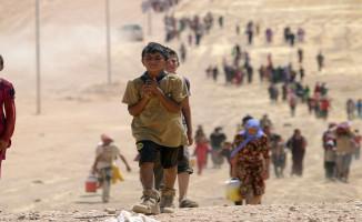 Türkiye'de Hangi İlde Kaç Suriyeli Mülteci Olduğu Belli Oldu