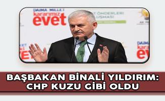 Başbakan Binali Yıldırım: CHP Birden Kuzu Gibi Oldu