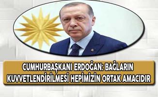 Cumhurbaşkanı Erdoğan: Bağların Kuvvetlendirilmesi Hepimizin Ortak Amacıdır