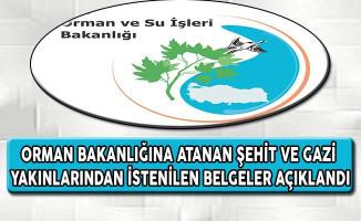 Orman Bakanlığında Atanan Şehit ve Gazi Yakınlarından İstenilen Belgeler Açıklandı