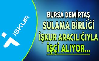 Bursa Demirtaş Sulama Birliği İşkur Aracılığıyla İşçi Alımı Yapıyor