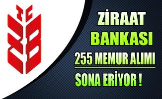 Ziraat Bankası 255 Memur Alımı Başvuruları Sona Eriyor