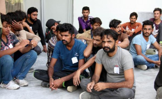 Erzincan'da Yapılan Yol Kontrolünde 241 Kaçak Yakalandı