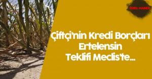 Çiftçi'nin Kredi Borcu 1 Sene Ertelensin Teklifi Meclis Komisyonu'nda