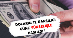 Dolar Güne Düşüşle Başladı ( Doların TL Karşılığı Ne Kadar ? )