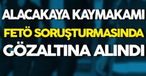 Elazığ Alacakaya Kaymakamı FETÖ'den Gözaltına Alındı