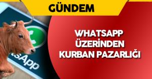 Whatsapp Üzerinden Kurban Seçimi ve Pazarlığı Yapıyorlar